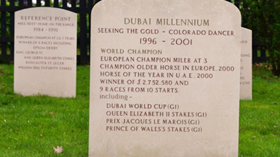 Gravestones in the main yard at Dalham Hall Stud