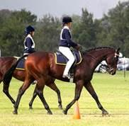 Chevronel at Pony Club